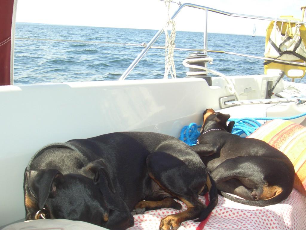 Auf See zwischen Damp u. Fehmarn Juni 2010