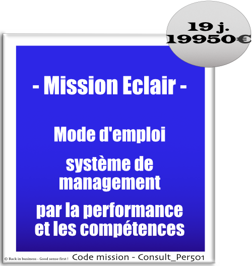 Mission éclair, mode d'emploi système de management par la performance et les compétences. Conseil en transformation - conseil en organisation - Conseil en management - Conseil en talent management - Back in business - Good sense first !