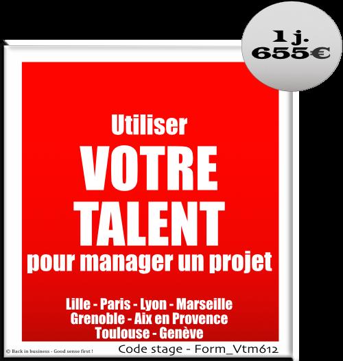 Utiliser votre talent pour manager un projet - Management de projet - Management hors hiérarchie - Management transversal - Formation professionnelle Inter / intra entreprise - Back in business - Good sense first !.