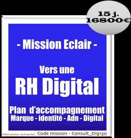 Vers une rh digital. Plan d'accompagnement marque, identité, dan, digital rh. Conseil en transformation - conseil en organisation - Conseil en management - Conseil en talent management - Back in business - Good sense first !