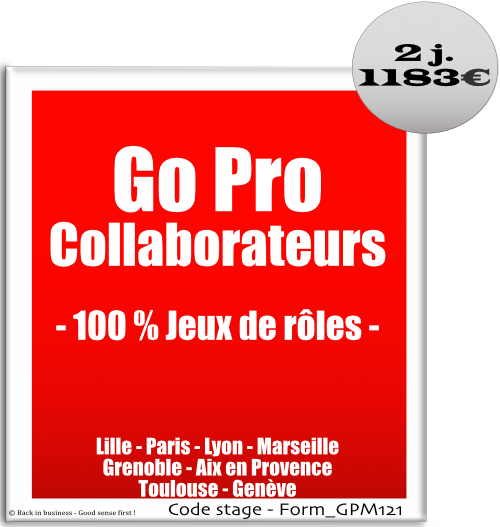 Go Pro Collaborateurs - 100% jeux de rôles - Management - leadership - Formation professionnelle Inter / intra entreprise - Back in business - Good sense first !.