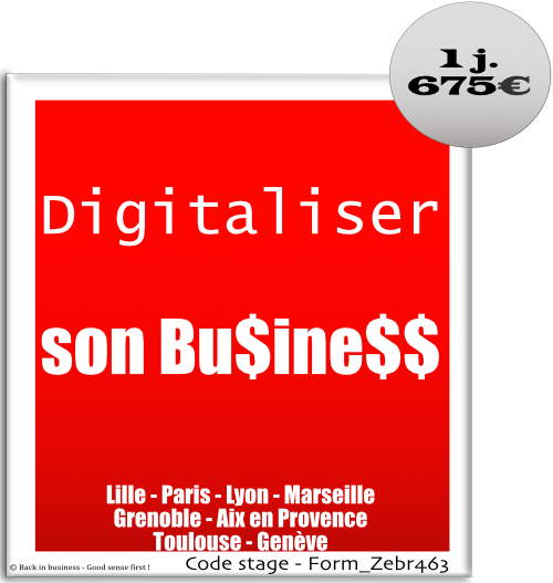 Digitaliser son business - digital, entreprise, entrepreneur, création, sasu, tpe, pme, Formation professionnelle Inter / intra entreprise - Back in business - Good sense first !