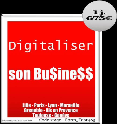 Digitaliser son business - digital, entreprise, entrepreneur, création, sasu, tpe, pme, Formation professionnelle Inter / intra entreprise - Back in business - Good sense first !