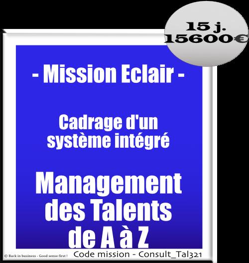 Mission éclair, cadrage d'un système intégré de management des talents de a à z. Conseil en transformation - conseil en organisation - Conseil en management - Conseil en talent management - Back in business - Good sense first !