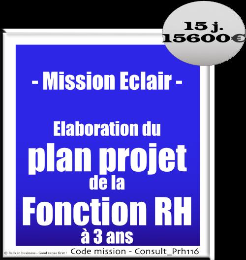 Mission éclair, élaboration du plan projet de la fonction RH à 3 ans. Conseil en transformation - conseil en organisation - Conseil en management - Conseil en talent management - Back in business - Good sense first !