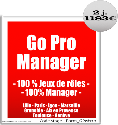Go pro manager, 100% jeux de rôles, 100% manager, développement personnel, Formation professionnelle Inter / intra entreprise - Back in business - Good sense first !