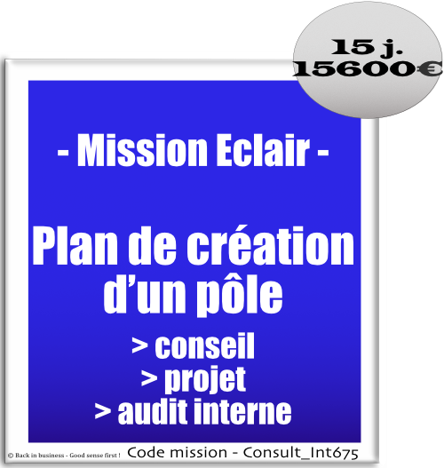Mission éclair, plan de création d'un pôle conseil, projet, audit interne. internalisation, externalisation, compétences, outsourcing, nearshoring, Conseil en transformation - conseil en organisation - Conseil en management - Conseil en talent management - Back in business - Good sense first !