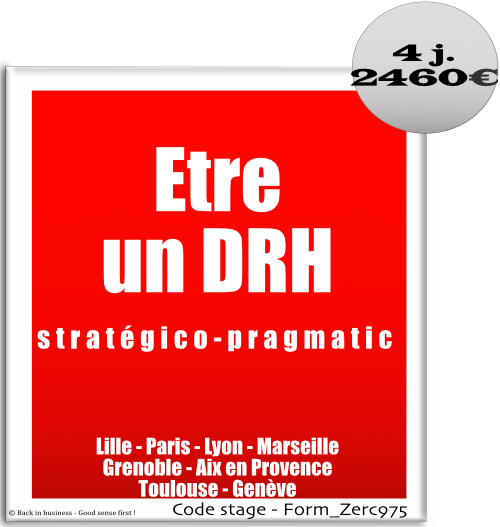 Etre un DRH stratégico-pragmatic - HRBP - HR Business partner - ressources humaines - GRH - management des talents - Formation professionnelle Inter / intra entreprise - Back in business - Good sense first !