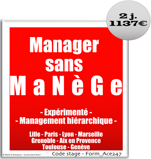 Manager sans manège - Management hiérarchique - Leadership - Formation professionnelle Inter / intra entreprise - Back in business - Good sense first !.