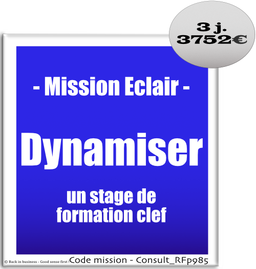 Mission éclair, dynamiser un stage de formation clef. Professionnalisation, formateur, conception, animation, ingénierie pédagogique, conseil en transformation - conseil en organisation - Conseil en management - Conseil en talent management - Back in business - Good sense first !