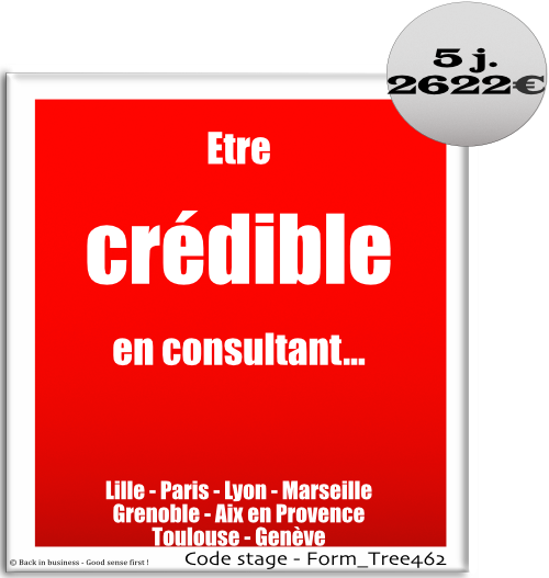 Etre crédible en consultant - conseil, management, stratégie, talent management, rh, organisation, si, système d'information, Formation professionnelle Inter / intra entreprise - Back in business - Good sense first !
