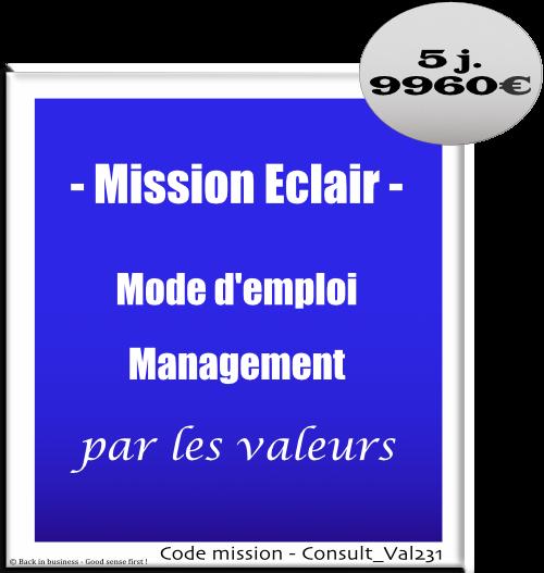 Mission éclair, mode d'emploi management par les valeurs, Conseil en transformation - conseil en organisation - Conseil en management - Conseil en talent management - Back in business - Good sense first !