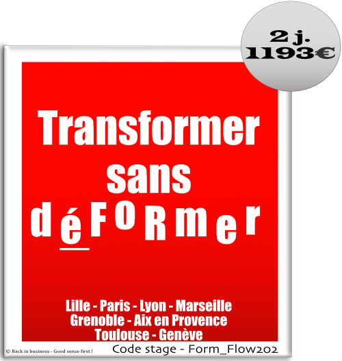 Transformer sans déformer - conseil, audit, transformation, organisation, réorganisation, Formation professionnelle Inter / intra entreprise - Back in business - Good sense first !