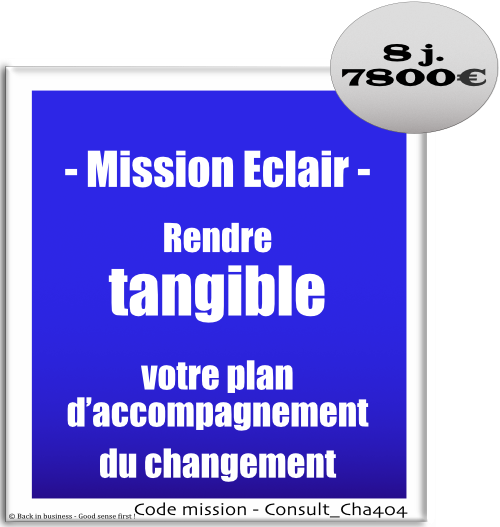 Mission éclair, rendre tangible votre plan d'accompagnement du changement, conduite du changement, change, Conseil en transformation - conseil en organisation - Conseil en management - Conseil en talent management - Back in business - Good sense first !