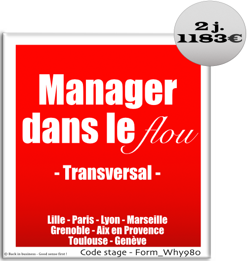 Manager dans le flou - Management transversal - Management de projet - Management hors hiérarchie - Formation professionnelle Inter / intra entreprise - Back in business - Good sense first !.