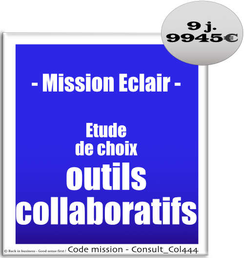 Mission éclair, étude de choix outils collaboratifs. réseaux sociaux, community management, transversal, travailler autrement, Conseil en transformation - conseil en organisation - Conseil en management - Conseil en talent management - Back in business - Good sense first !