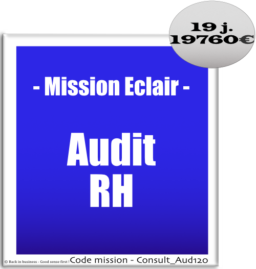 Mission éclair, audit rh. Conseil en transformation - conseil en organisation - Conseil en management - Conseil en talent management - Back in business - Good sense first !