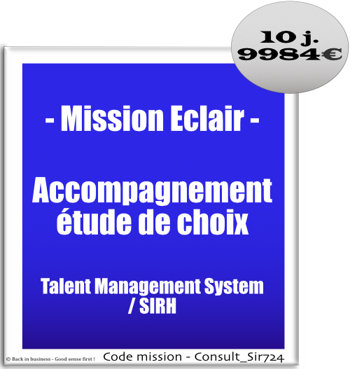 Mission éclair, accompagnement étude de choix talent management system / sirh. big data, siad, éditeur, saas, intégrateur, Conseil en transformation - conseil en organisation - Conseil en management - Conseil en talent management - Back in business - Good sense first !