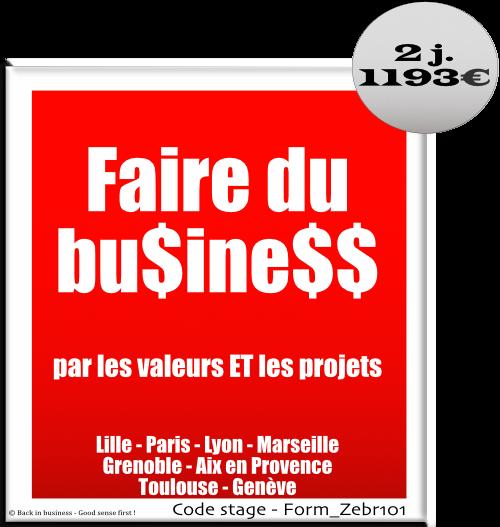 Faire du business par les valeurs et les projets - Management de projet - Management transversal - Management hors hiérarchie - Formation professionnelle Inter / intra entreprise - Back in business - Good sense first !.