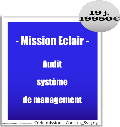 Mission éclair, audit système de management, Conseil en transformation - conseil en organisation - Conseil en management - Conseil en talent management - Back in business - Good sense first !