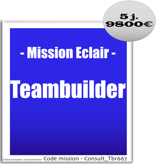 Mission éclair, teambuilder. Teambuilding. Cohésion d'équipe. Conseil en transformation - conseil en organisation - Conseil en management - Conseil en talent management - Back in business - Good sense first !