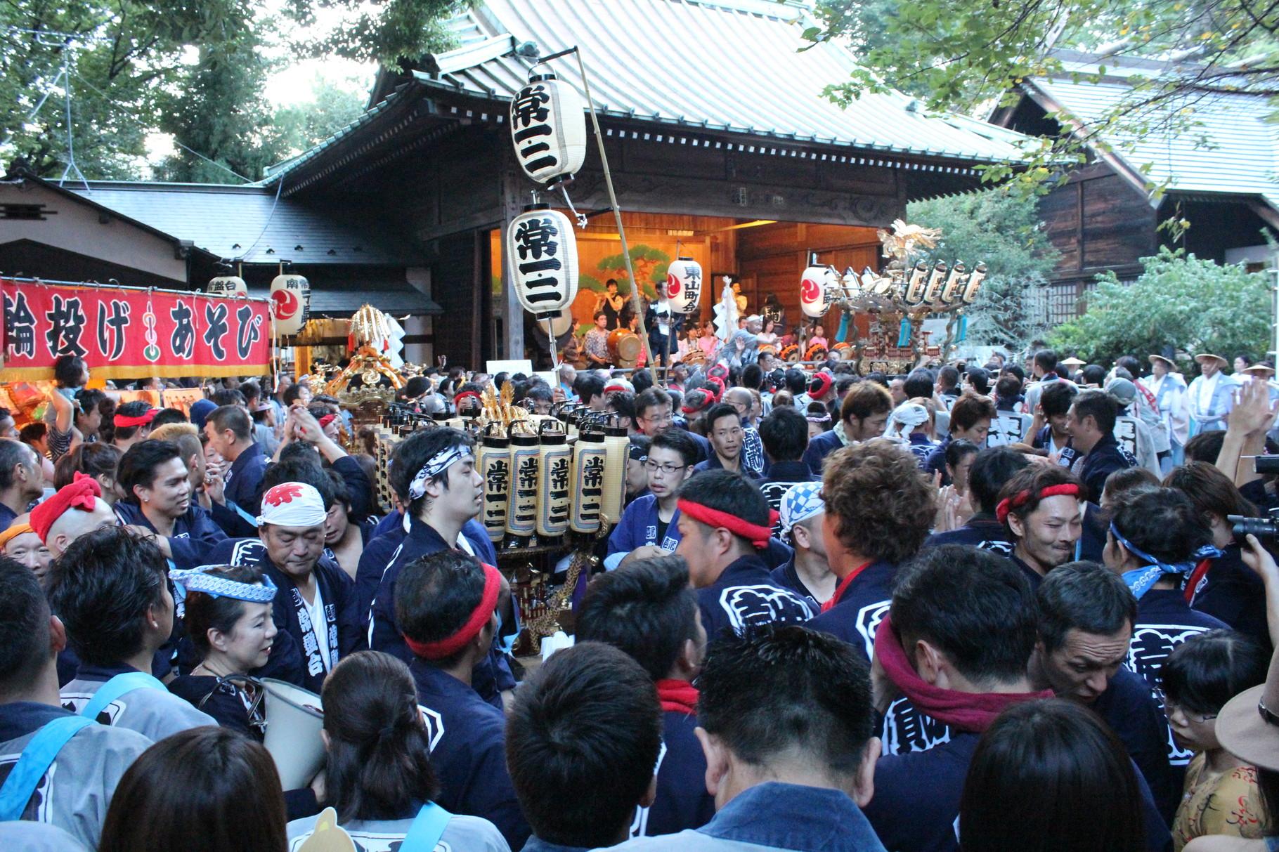Das große Finale: Alle Mikoshi-Paraden enden beim Tenso-Schrein.