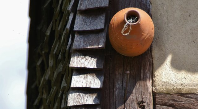 Accroché à la maison le nichoir à moineau