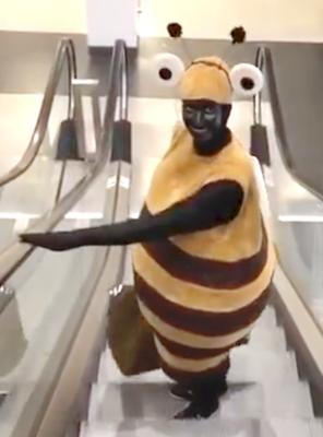 Misereor, Bienenkostüm auf der Grünen Woche Berlin