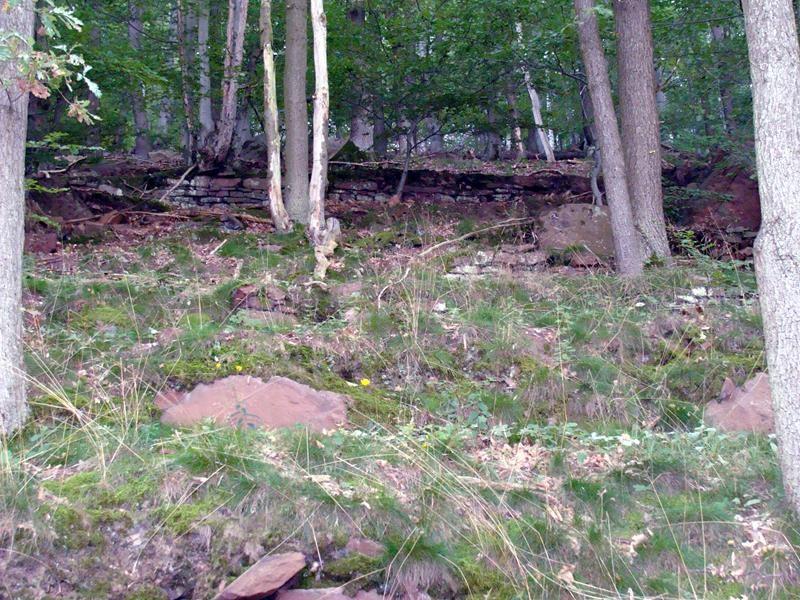 Immer wieder sieht man Mauerreste im Wald.