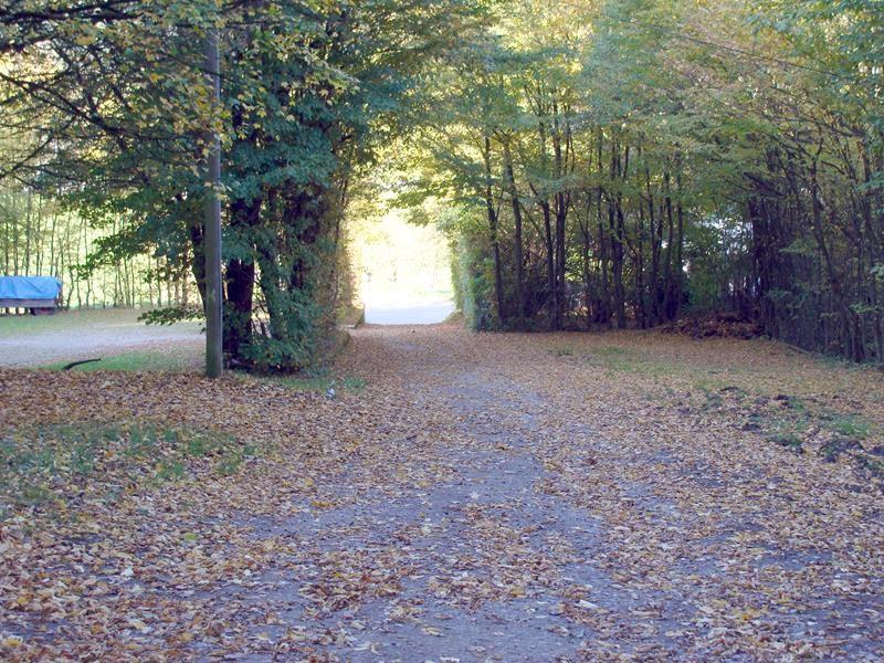 In Eberbach....erst al mit Basco spazieren gehen.