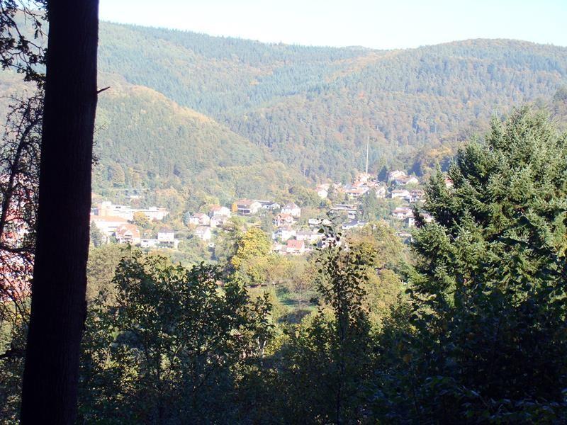 Blick auf Eberbach