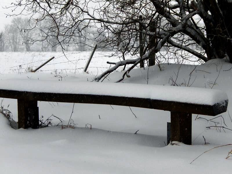 So viel hat es inzwischen geschneit....an der Bank gut zu sehen.