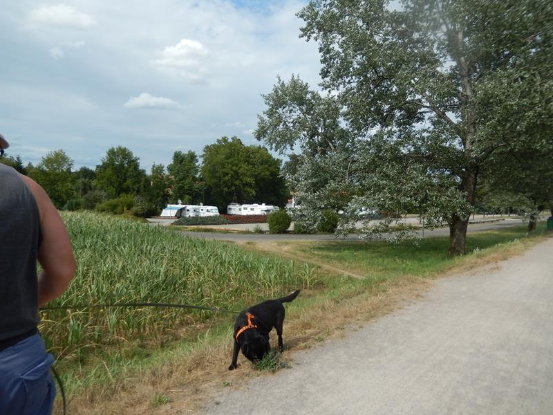Spaziergang an der Wutach entlang
