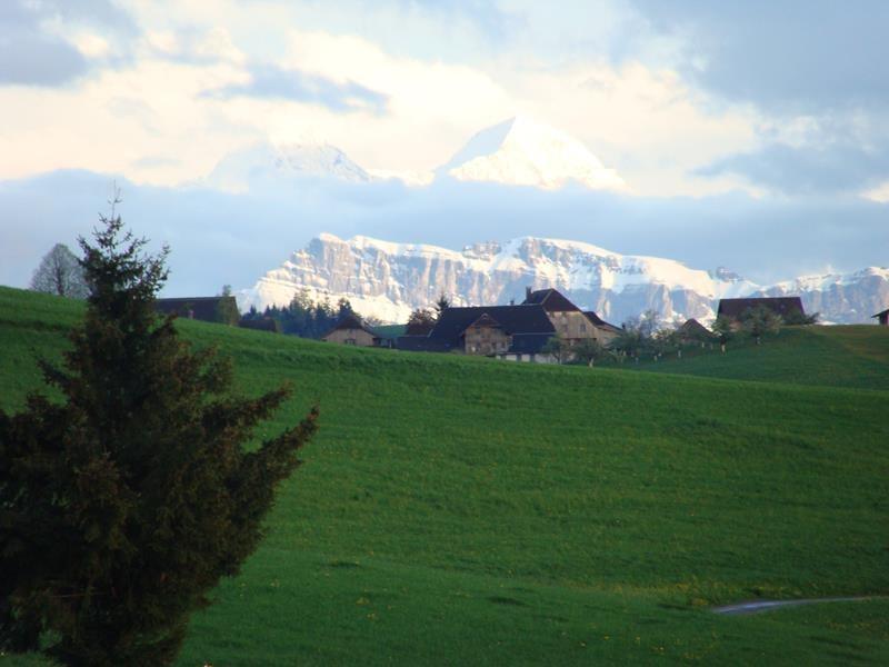Schneebedeckte Berge in der Ferne