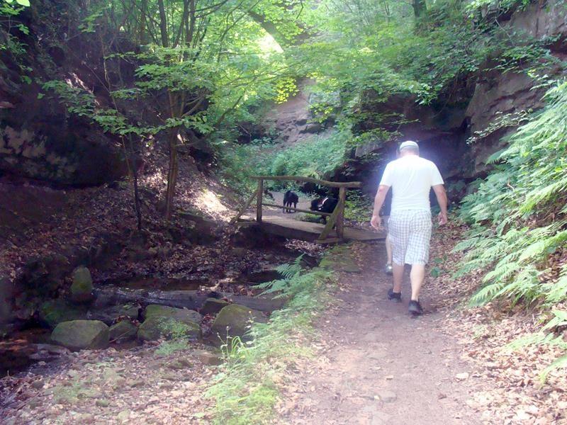 Der Wandernweg ist wirklich sehr schön. Letztes Jahr war die Schlucht wegen einem Erdrutsch gesperrt.