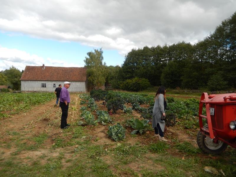 Hier wird zum Teil Gemüse von früher angebaut.....