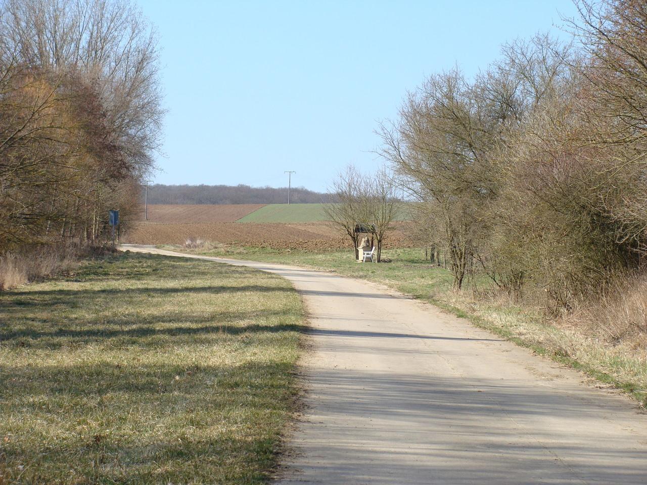 Mein täglicher Spazierweg mit Basco. Von der Straße Richtung Obereisenheim geht dieser Weg rechts ab.