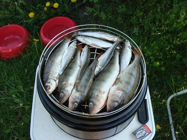 Lochplatte und Rost drauf, Fische drüber und WICHTIG Deckel auf den Cobb und drauf lassen