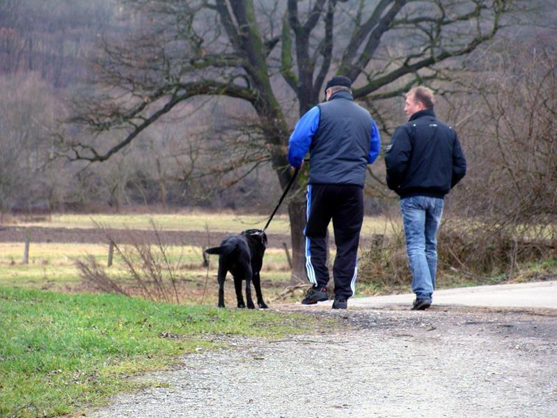 Wir gehen spazieren.