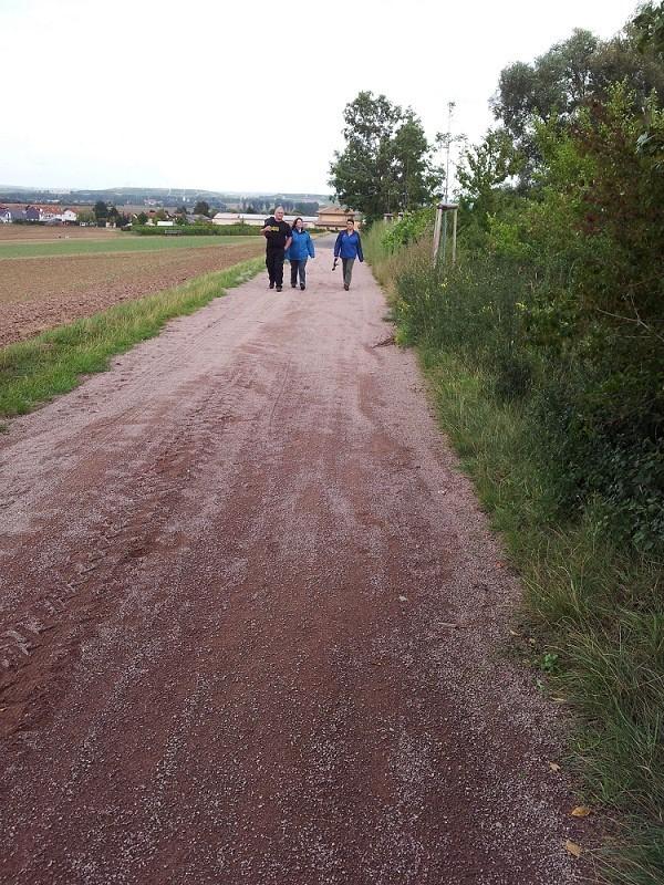 Gemeinsamer Spaziergang am Mittag in die Weinberge