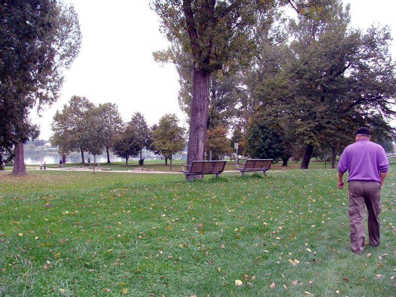 Der Park am Rhein ist echt sehr schön und gepflegt. Er wird auch gut besucht.