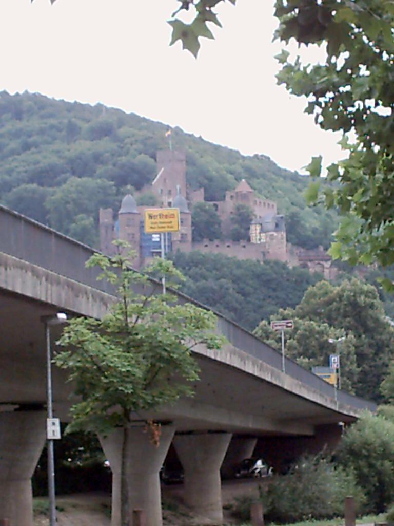 Das Schloss von Wertheim.