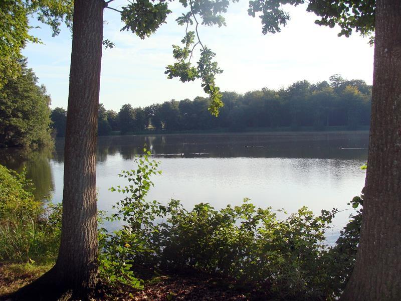 Der Teich in der Nähe des Otterzentrum