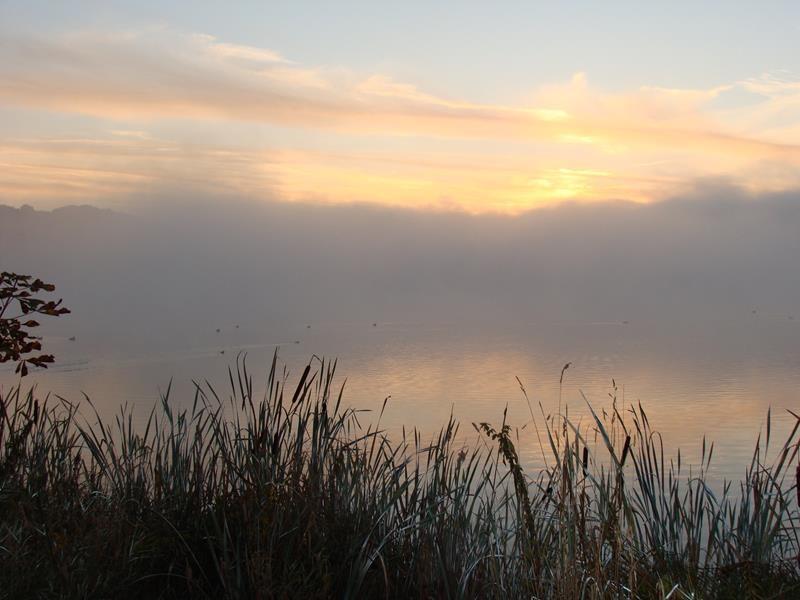 Morgens um 7:30 Uhr bin ich mit Basco unterwegs. Das Licht, die Ruhe.....es ist einfach nur toll.
