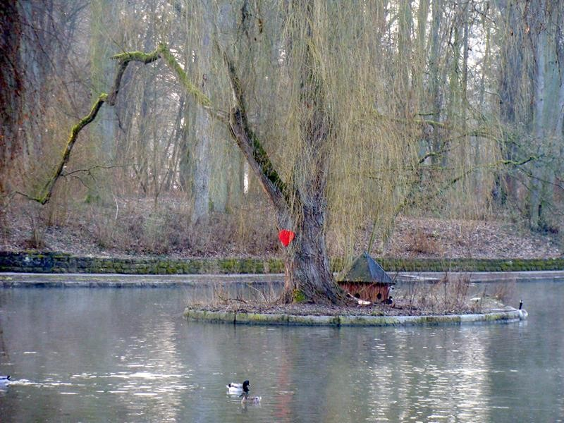 Da hängt tatsächlich ein Herz am Baum.....ist wohl die Liebesinsel der Enten.... ;))