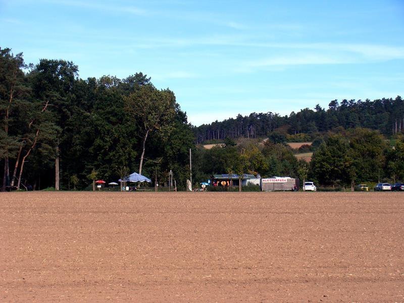 Unweit vom Expocamp ist ein Kletterwald.