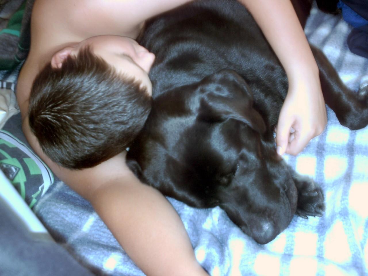 Eigentlich verboten - Hund im Bett. Aber kaum dreht man sich um........naja  - mal ein Auge zudrücken ;)