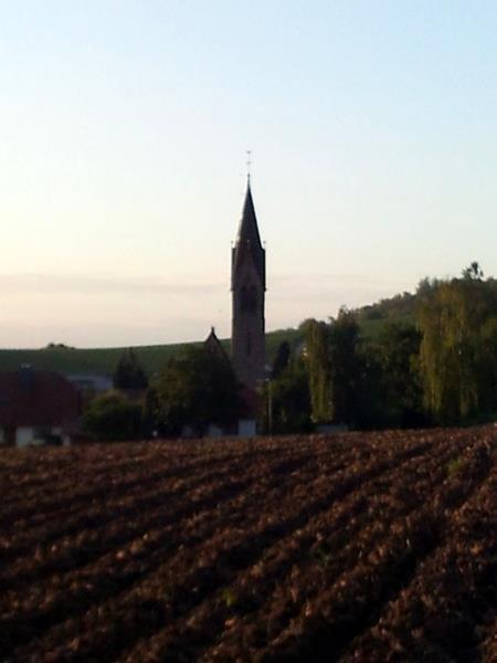 Siefersheim früh morgens