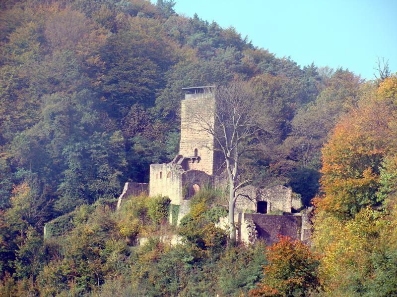 Wir fahren weiter.....Burgen gibt es am Neckar ja wirklich viele.