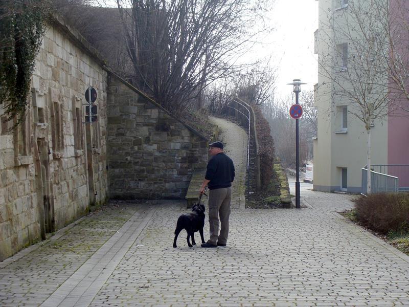 Wir folgen dem Weg auf das Klosterbollwerk, bzw. den Rest des Bollwerks.....
